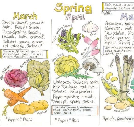 Chart Seasonal Fruit And Veg